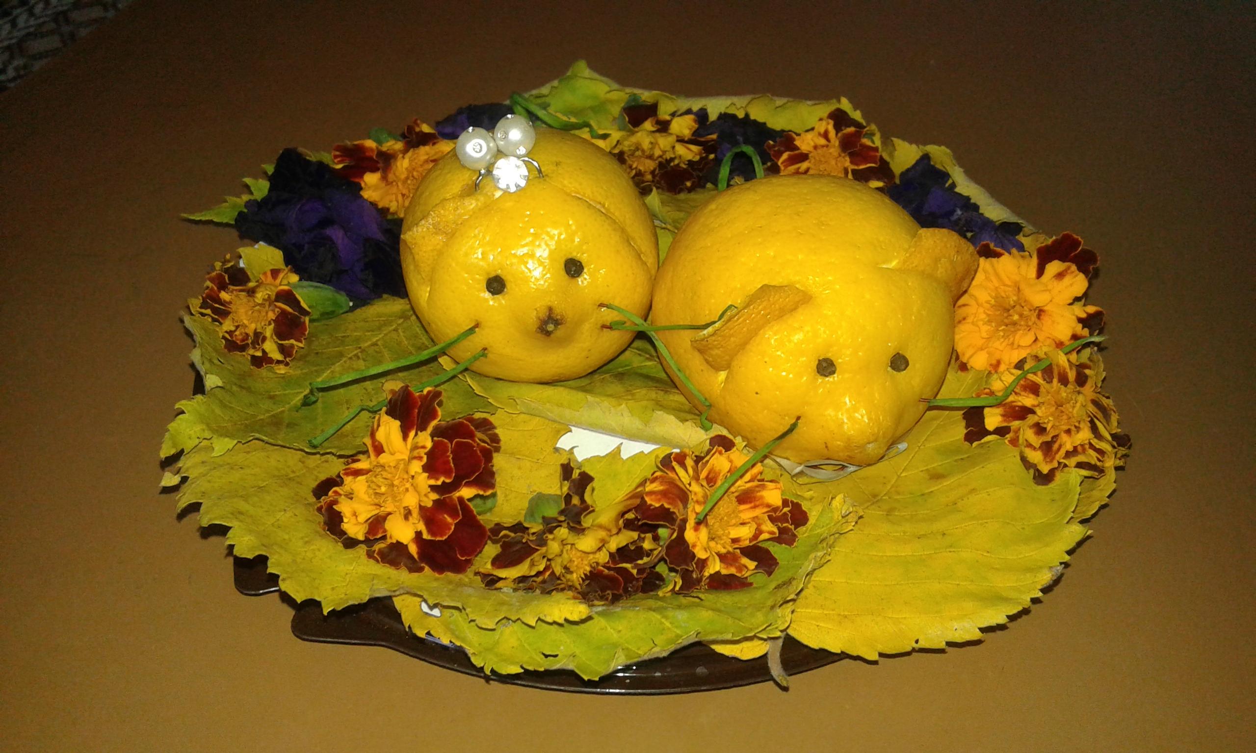 Поделки из овощей к празднику золотая осень 11